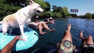 dog float tube