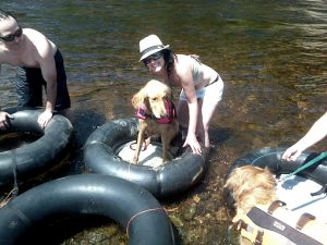 dog raft for river
