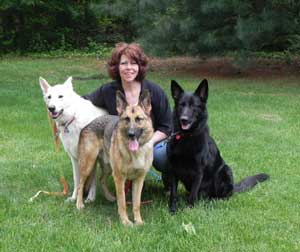 Dogs Hope German Shepherd & All Breed Rescue