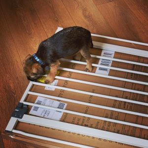 pet gate for stairs