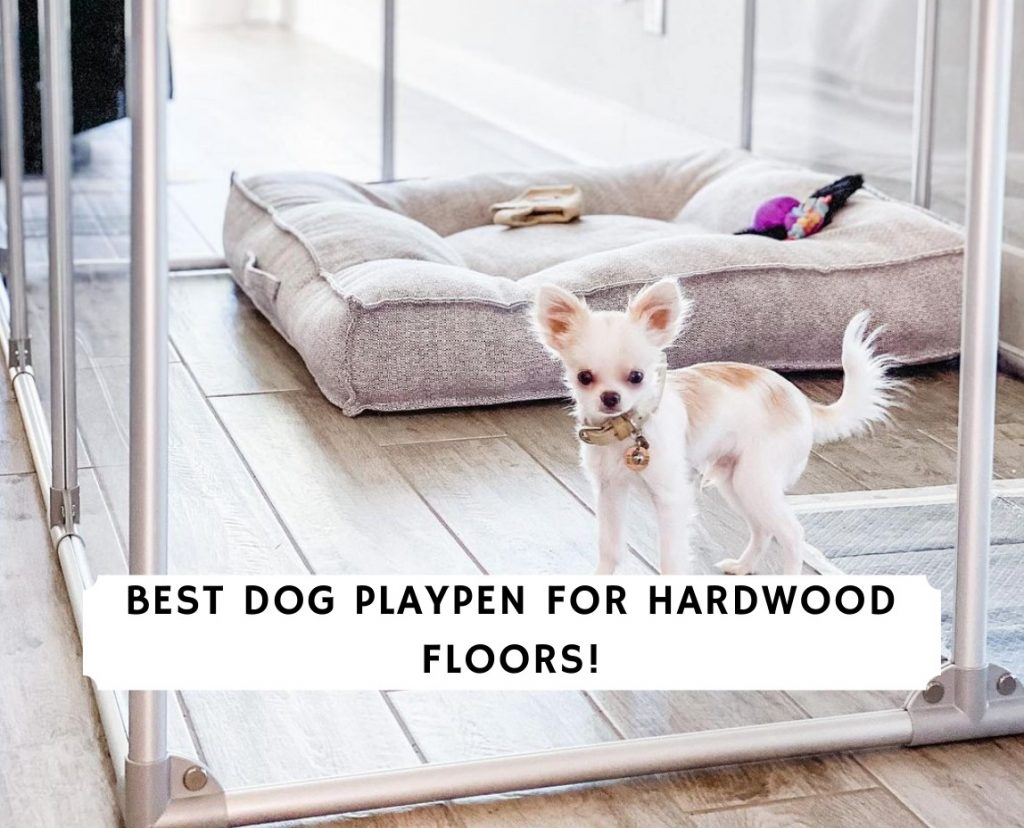 Best Dog Playpen for Hardwood Floors