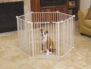 Carlson Pet Yard with Wide Gate