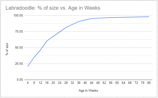 Labradoodle size vs. Age in Weeks