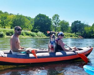 best kayak or canoe for dogs