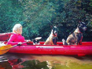 dog canoe
