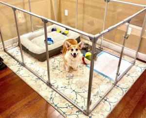dog exercise pen for Hardwood Floors