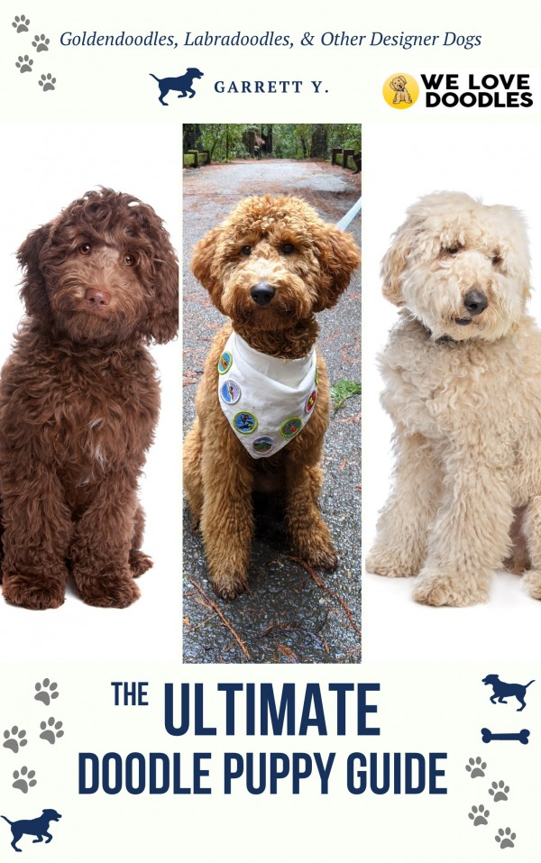 the ultimate doodle puppy guide cover