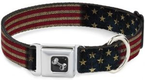 Buckle-Down Store Seatbelt Buckle Dog Collar