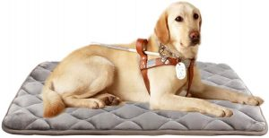 Furry Baby Dog Bed Mat