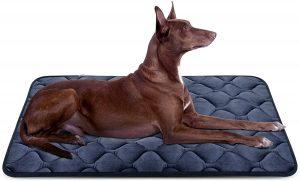 Hero Dog Bed Mat Crate Pad