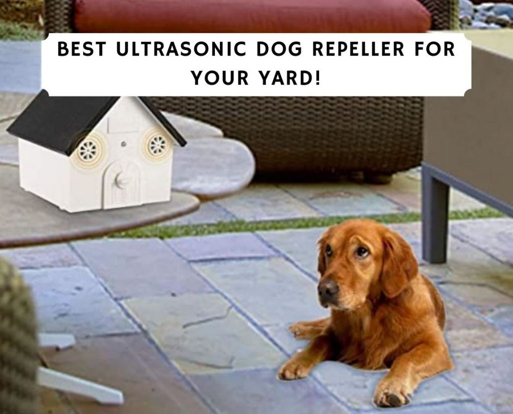 Ultrasonic Dog Repeller for Your Yard