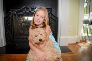 Labradoodles With Kids in the Family
