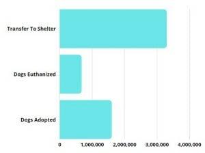Dog Rescue Statistics