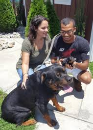 DuPrees Rottweilers
