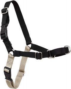 Pet Safe Easy Walk Dog Harness