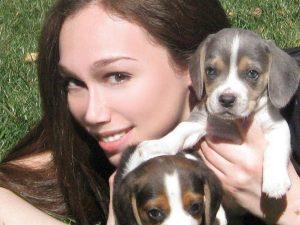Sunshine Beagle Puppies