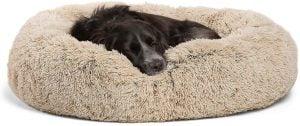 Best Friends Donut Dog Bed