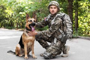 Manly Names for Dogs Inspired By War