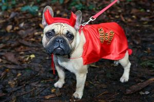 satanic names for dogs