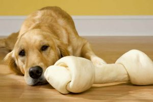 What are the usual risks associated with Beefhide treats