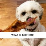 What is Beefhide