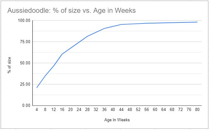 Aussiedoodle fully grown size chart