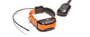 Benefits of Dogtra GPS Collar