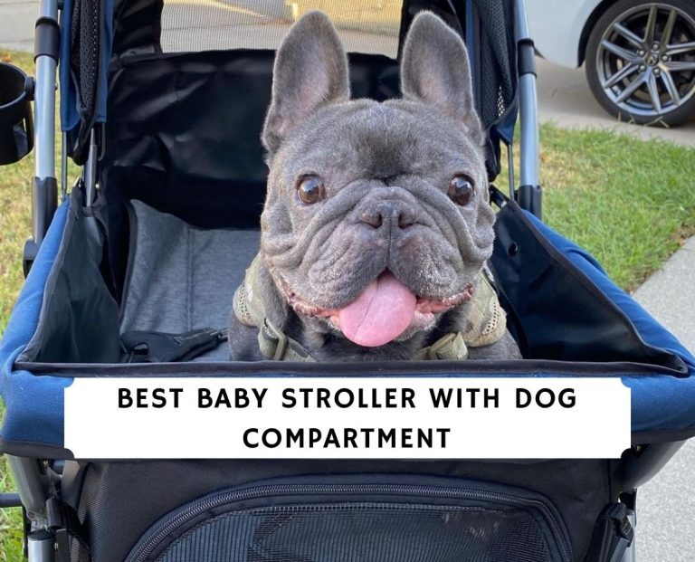 Best baby Stroller with Dog Compartment
