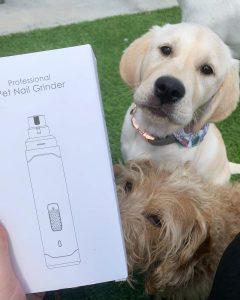 electric dog nail grinder
