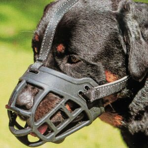 Barkless Pitbull Dog Muzzle