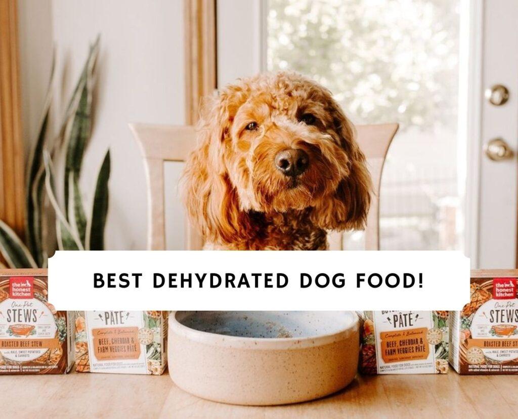 Best Dehydrated Dog Food