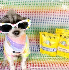 Chippin Dog Treats Info