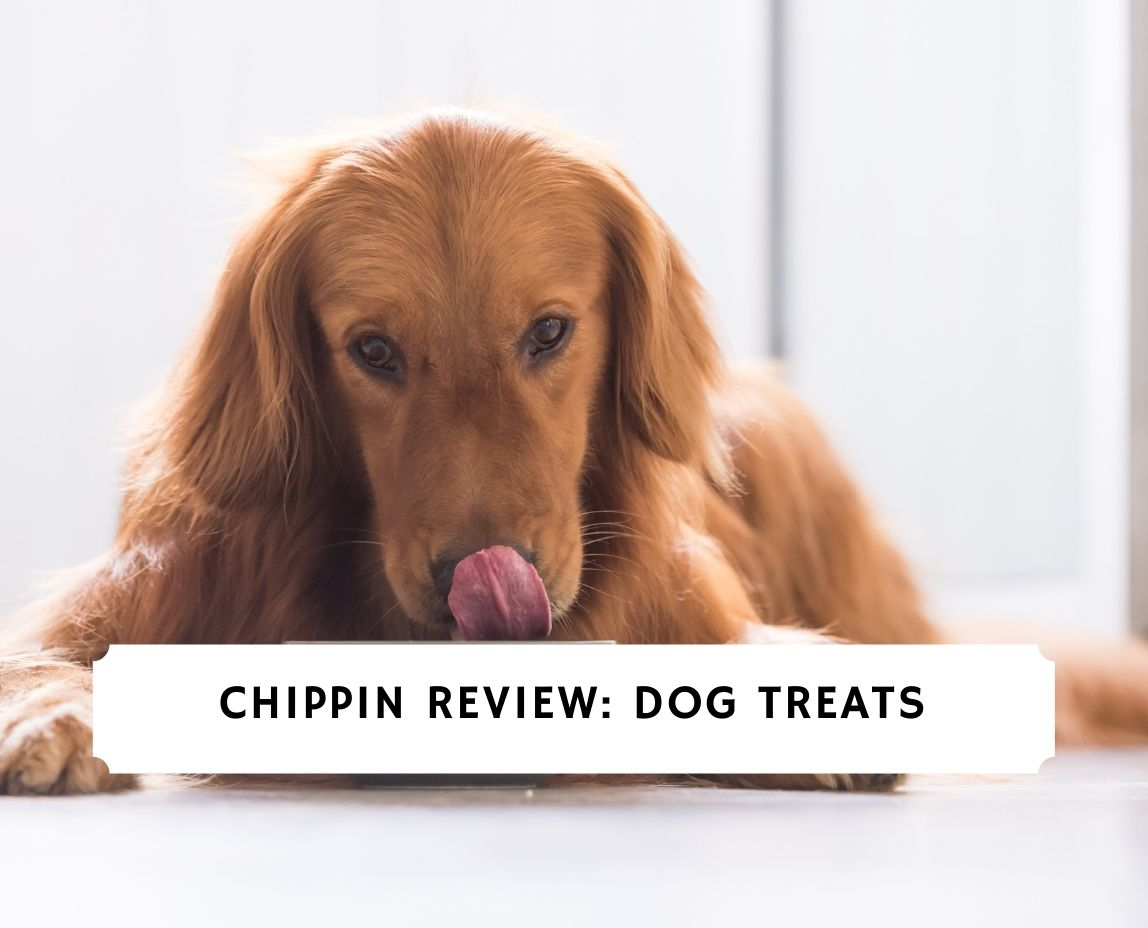 Chippin
