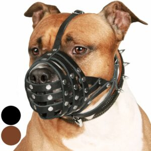 CollarDirect Leather Pitbull Muzzle