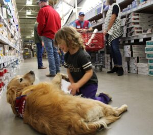Lowes Dog Policy