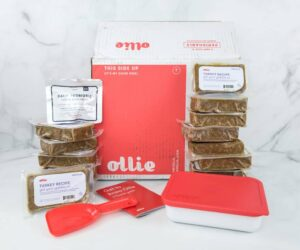 Ollie Dog Food Cost