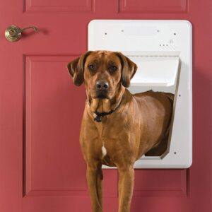 PetSafe Electronic Smart Door, Small to Large pets