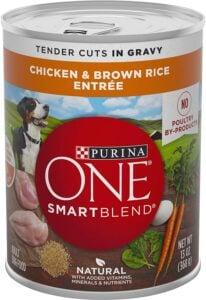 Purina ONE SmartBlend Canned Wet Food