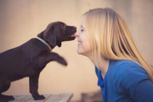 Should You Let Your Dog Lick Your Arm?