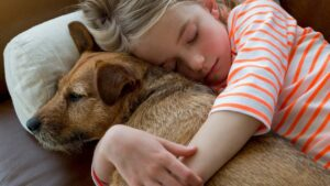 What Should You Do If Your Dog is Pacing Back and Forth