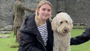 Giant Doodle Breeds' Health Issues