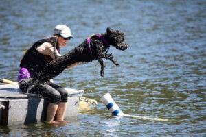 Waterdog Specialties