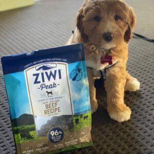 air dried puppy food