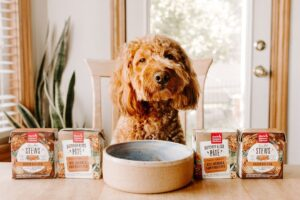dehydrated puppy food