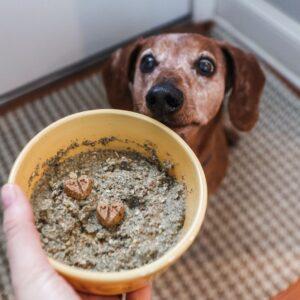 dehydrated raw dog food