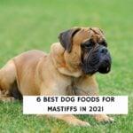 6 Best Dog Foods for Mastiffs in 2021