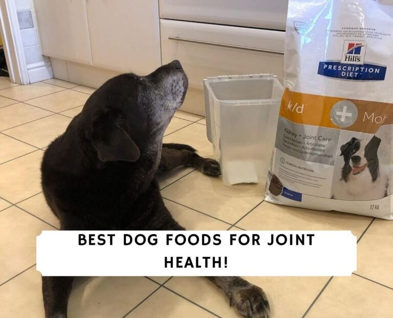Best Dog Foods for Joint Health