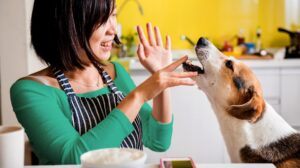 Other Edible Options For Your Dog