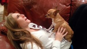 How to Stop Your Chihuahua from Howling Excessively