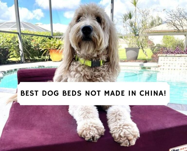 Best Dog Bed Not Made In China